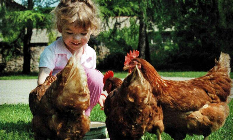 Natur- und Bauernhofkindergarten